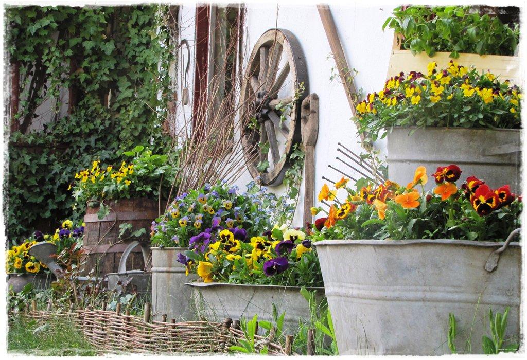 starocie w ogrodzie zogrodemnaty13