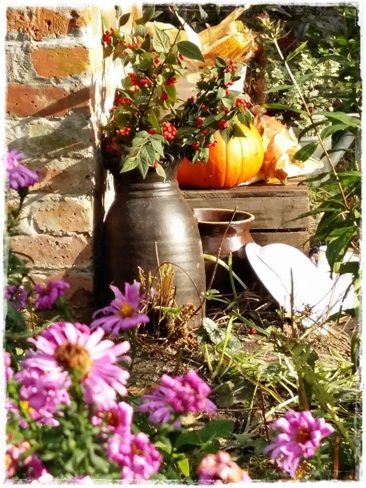 starocie w ogrodzie zogrodemnaty14