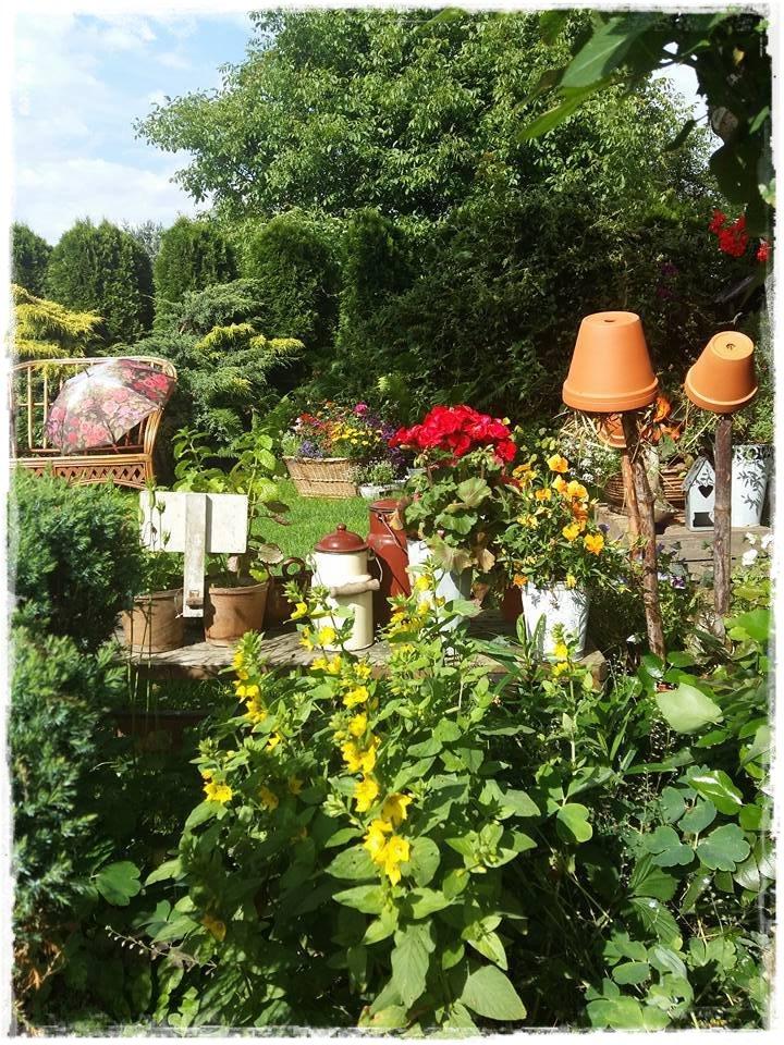 starocie w ogrodzie zogrodemnaty15
