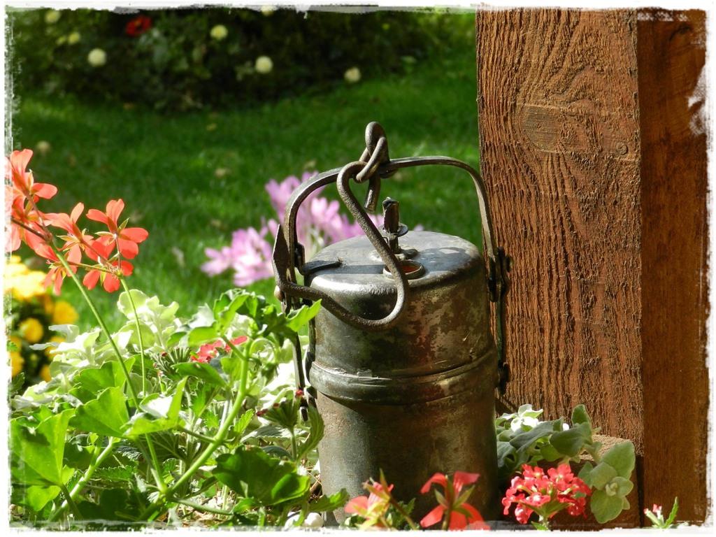 starocie w ogrodzie zogrodemnaty2