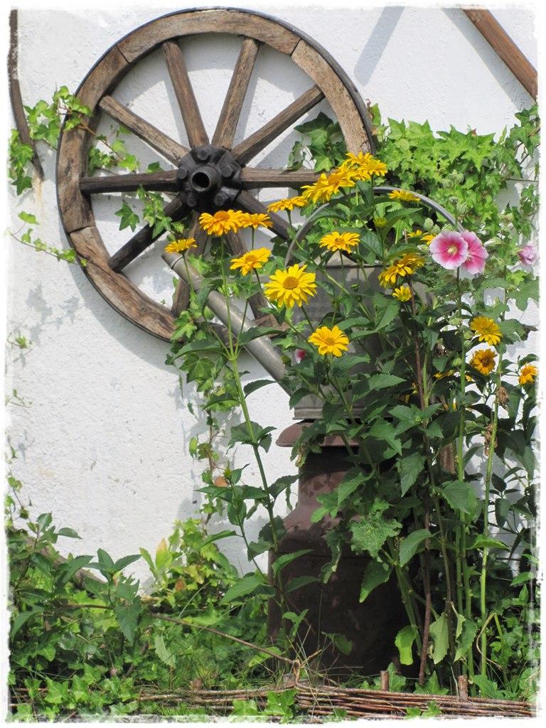 starocie w ogrodzie zogrodemnaty29