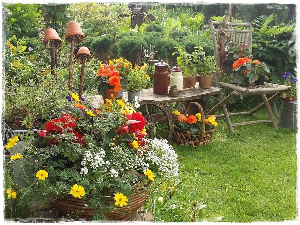 starocie w ogrodzie zogrodemnaty3