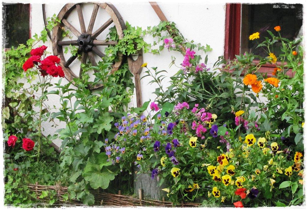 starocie w ogrodzie zogrodemnaty4