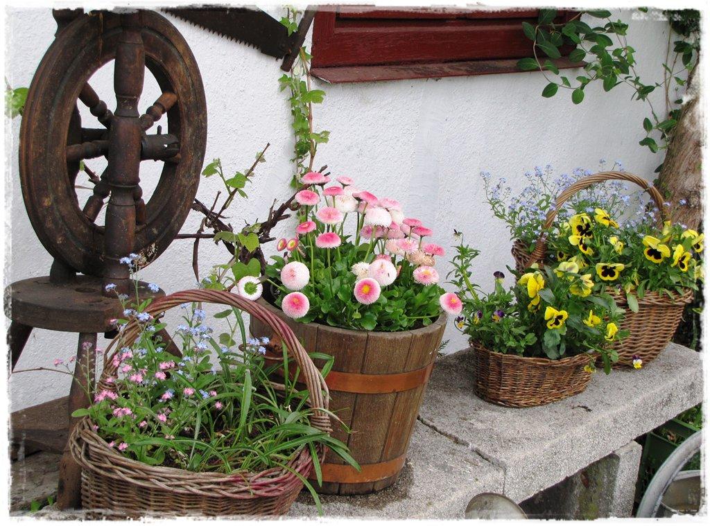 starocie w ogrodzie zogrodemnaty9