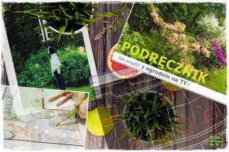 wyniesienie projektu ogrodu zogrodemnaty1