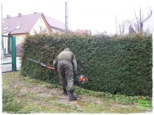 ogrody prywatne zogrodemnaty116