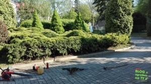 ogrody prywatne zogrodemnaty22