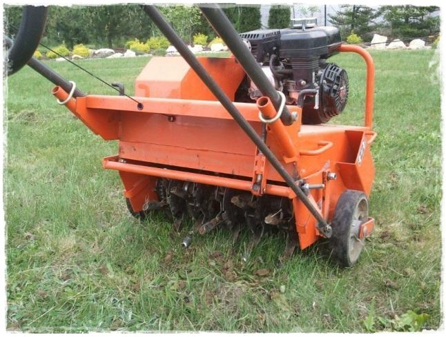 piaskowanie trawnika zogrodemnaty2