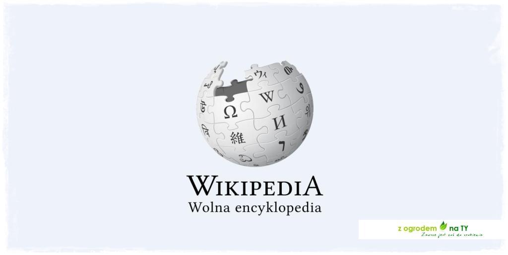 Wikipedia z ogrodemnaty2