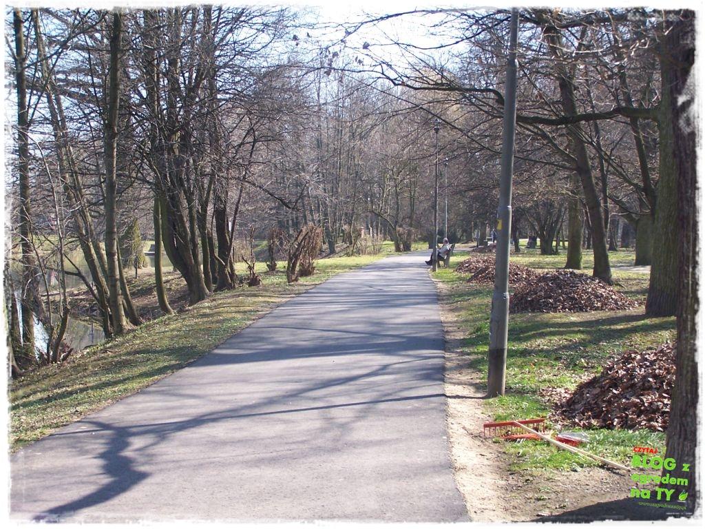 Park Miejski w Nysie zogrodemnaty15