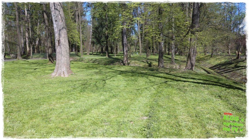 Park Miejski w Nysie zogrodemnaty24
