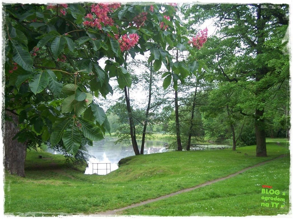 Park Miejski w Nysie zogrodemnaty36
