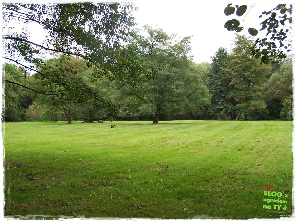 Park Miejski w Nysie zogrodemnaty41