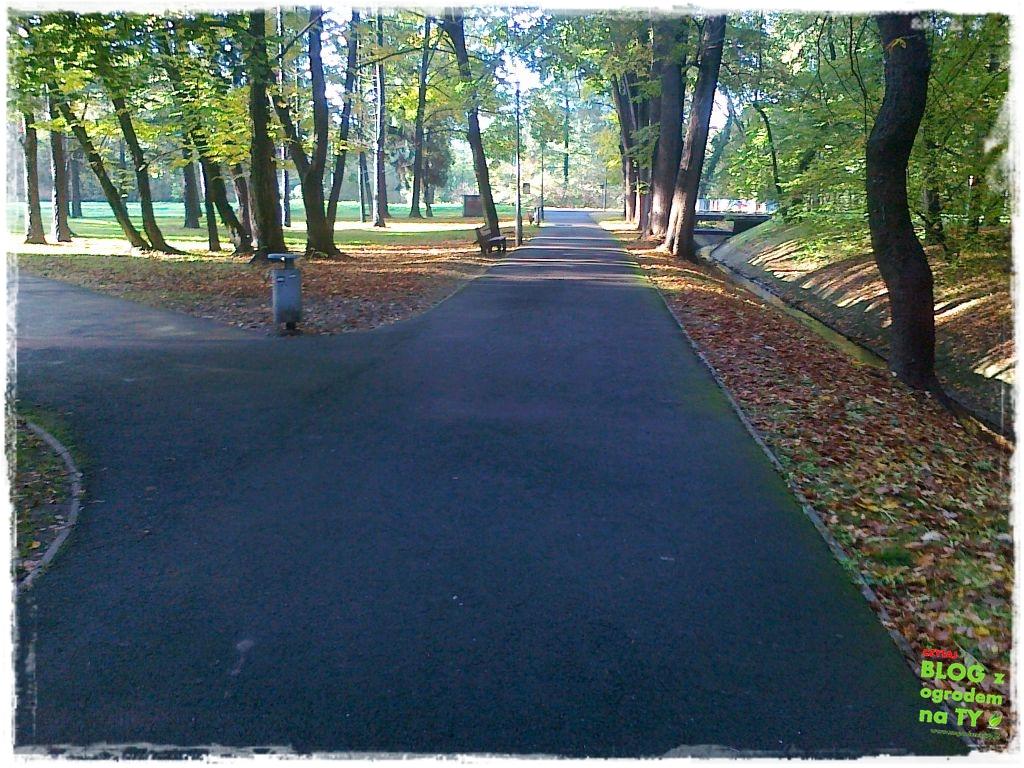 Park Miejski w Nysie zogrodemnaty53