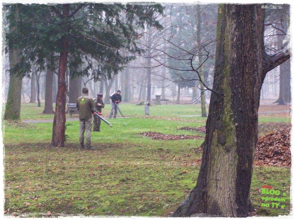 Park Miejski w Nysie zogrodemnaty72