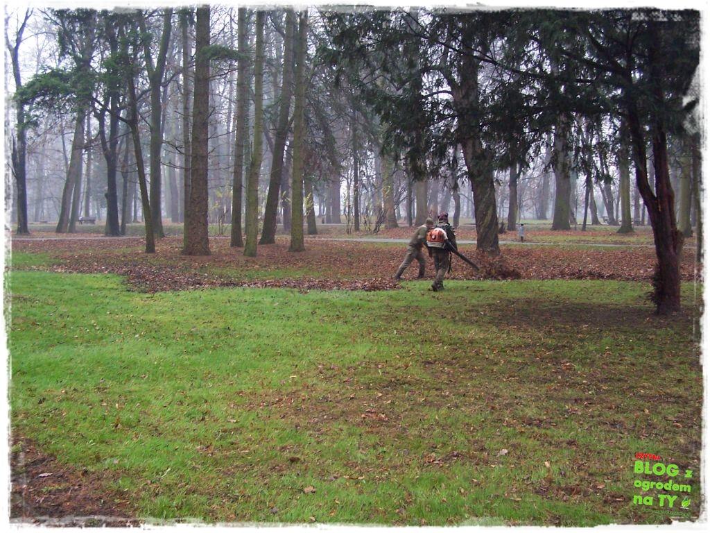 Park Miejski w Nysie zogrodemnaty73