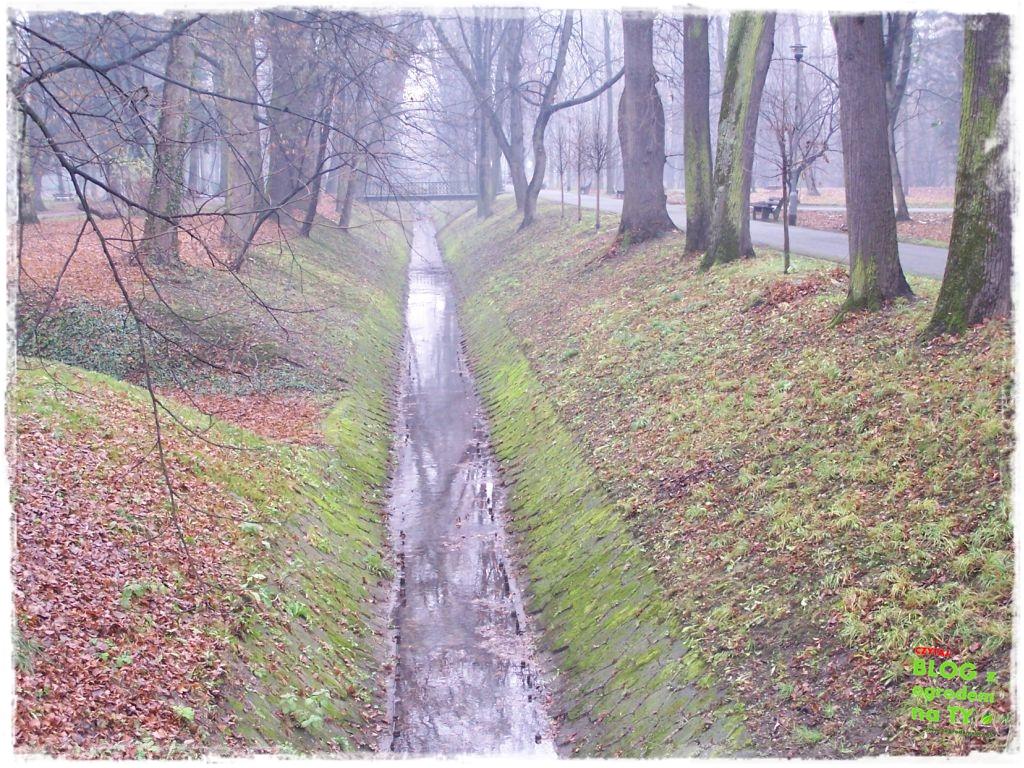 Park Miejski w Nysie zogrodemnaty75