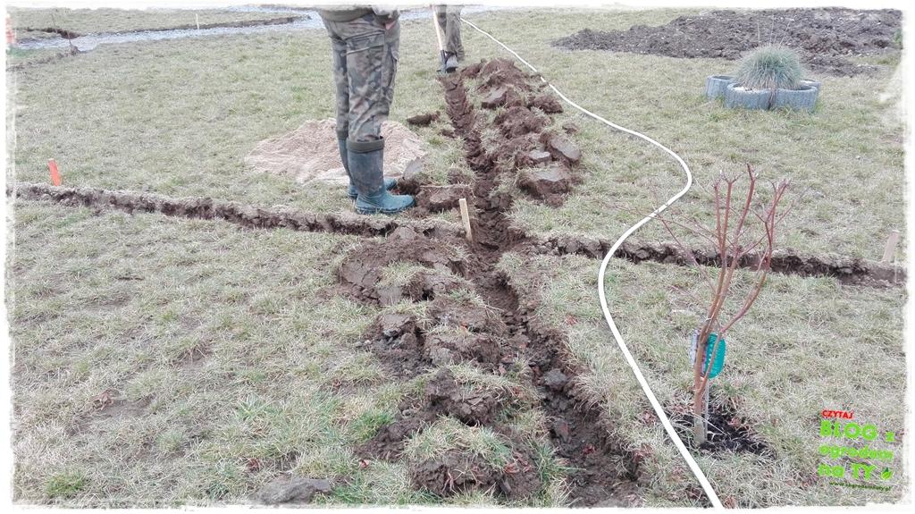 jak urządzić ogród zogrodemnaty19