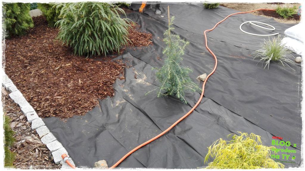 jak urządzić ogród zogrodemnaty63