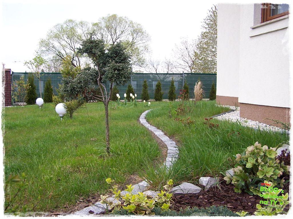 jak urządzić ogród zogrodemnaty104