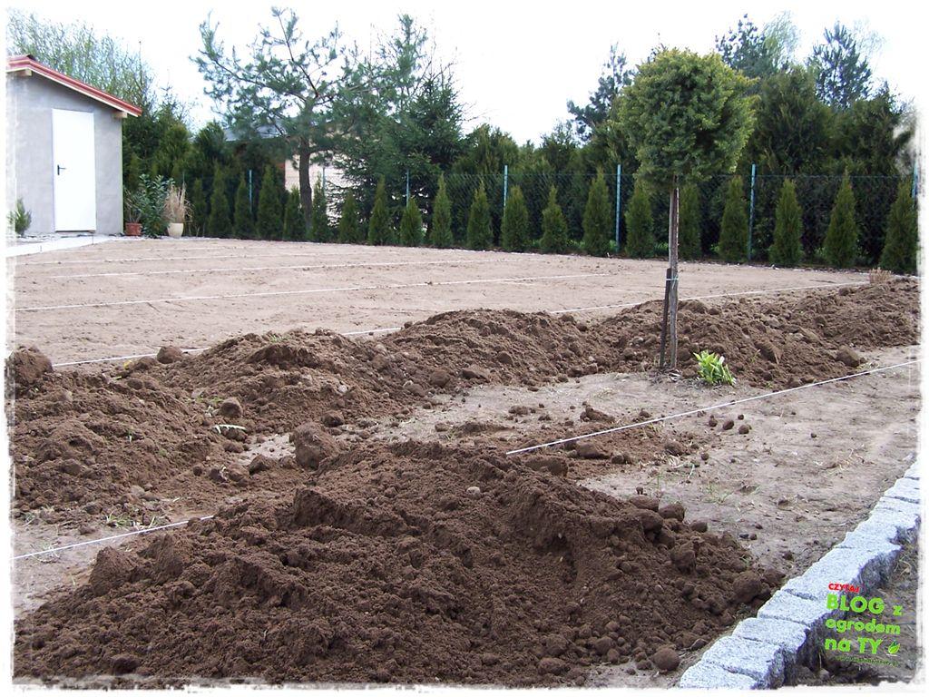 jak urządzić ogród zogrodemnaty113