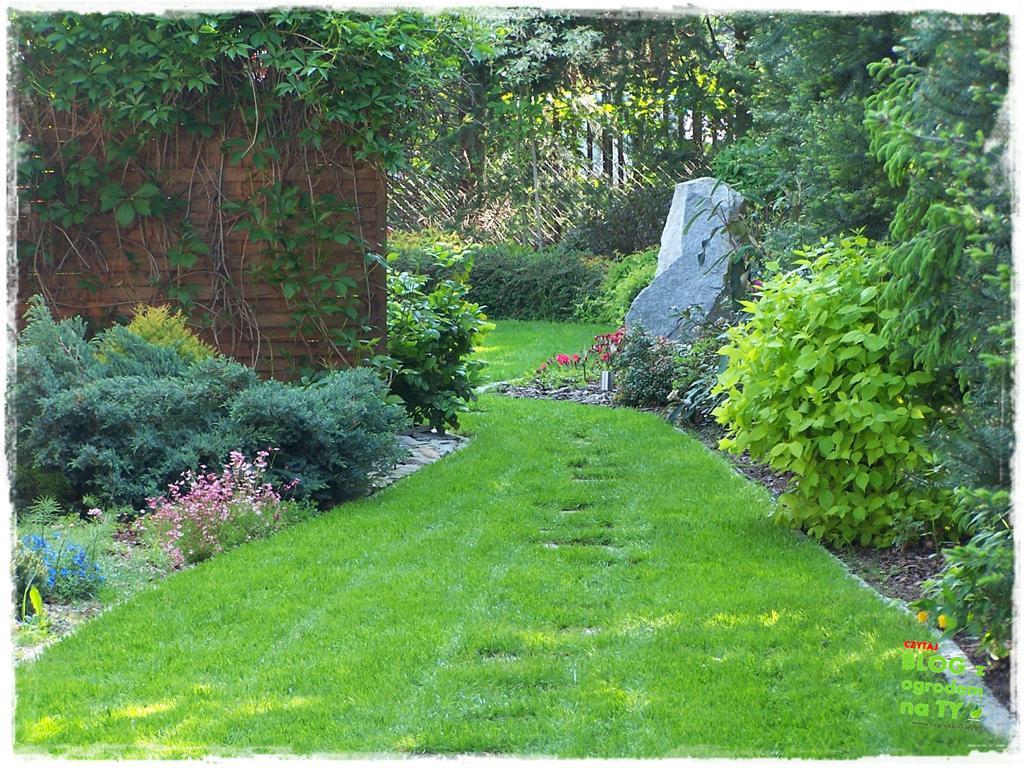 pomysły ogrodowe zogrodemnaty6