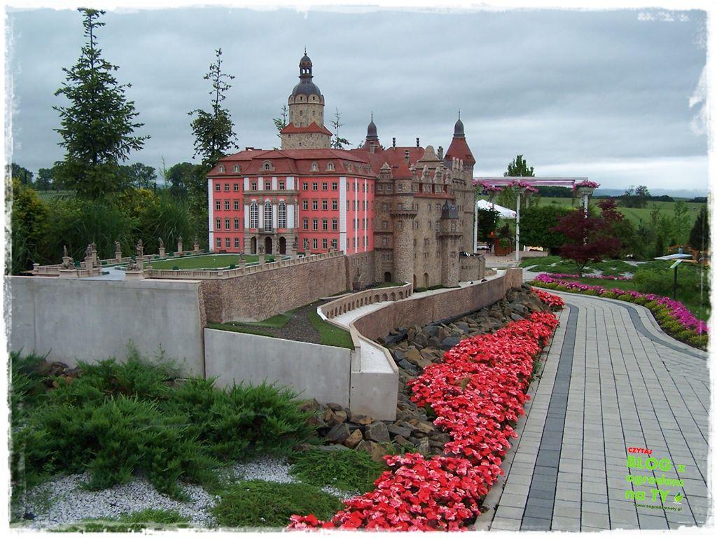 minieuroland festiwal kwiatów zogrodemnaty35