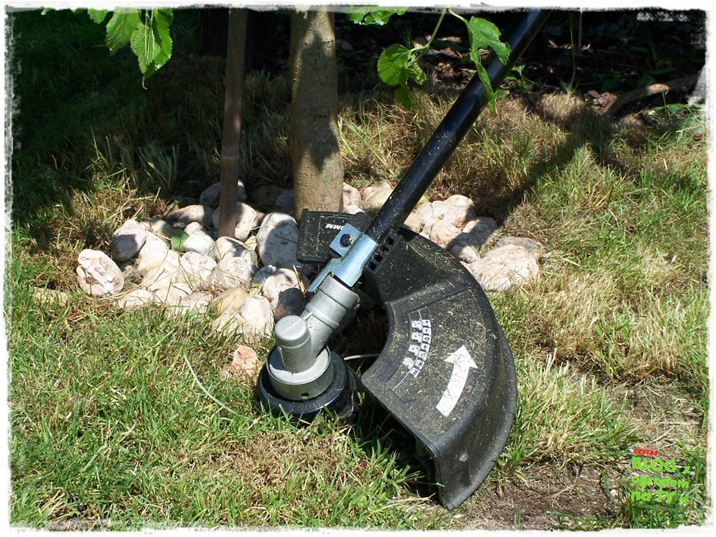 jak kosić trawnik zogrodemnaty22