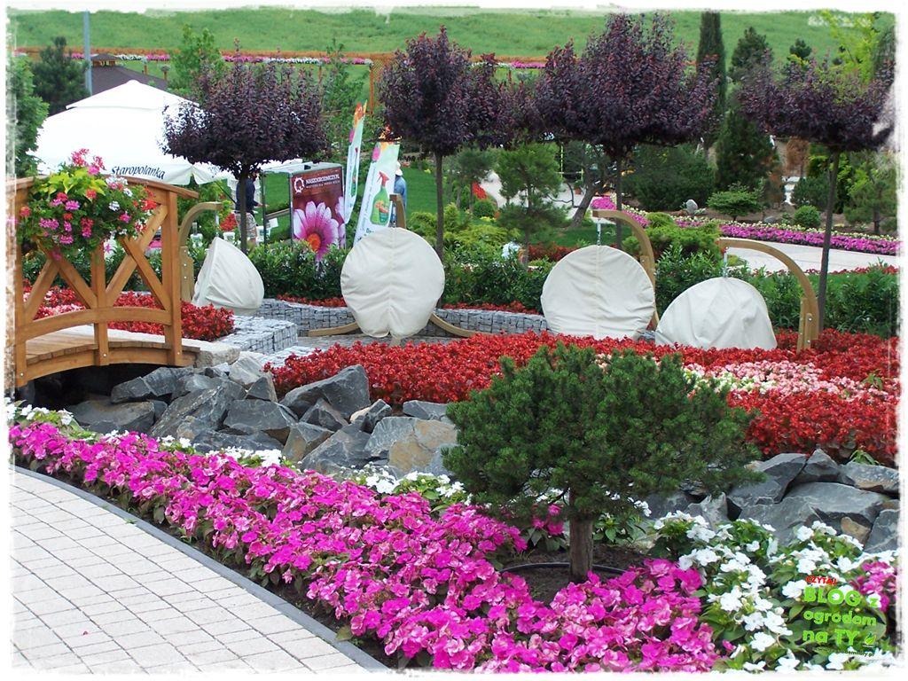 minieuroland festiwal kwiatów zogrodemnaty6