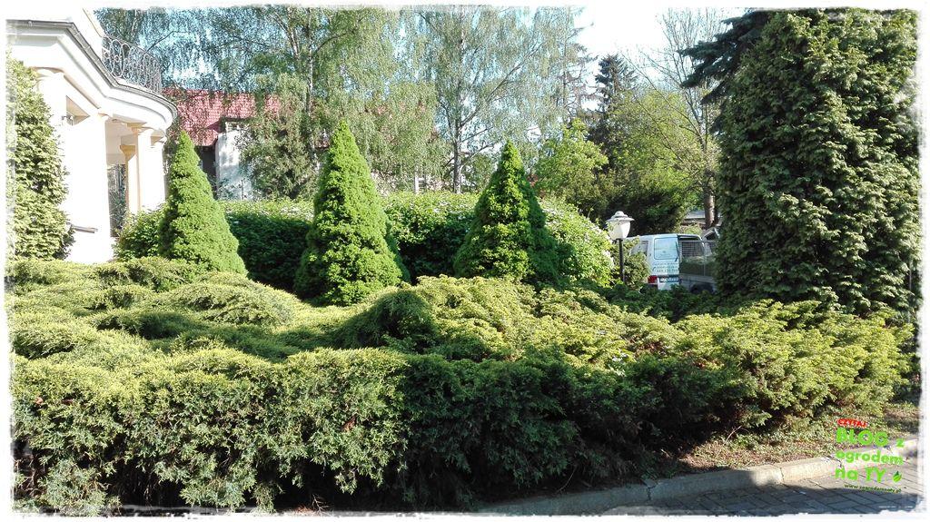 pomysły ogrodowe zogrodemnaty28