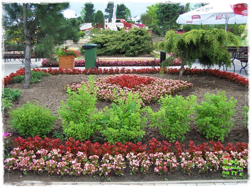 minieuroland festiwal kwiatów zogrodemnaty4