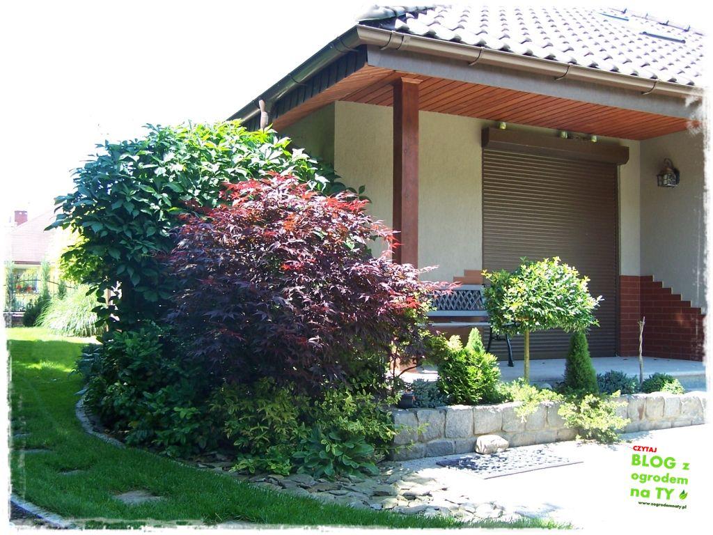 taras w ogrodzie zogrodemnaty22