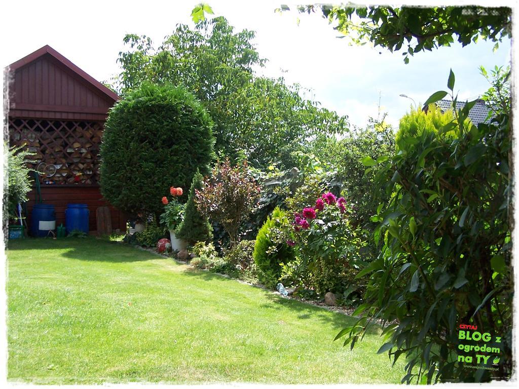 Ogród z dużą ilością gatunków zogrodemnaty36