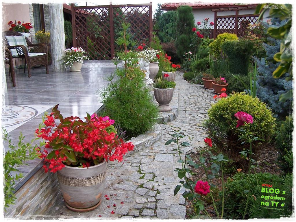Ogród z dużą ilością gatunków zogrodemnaty15