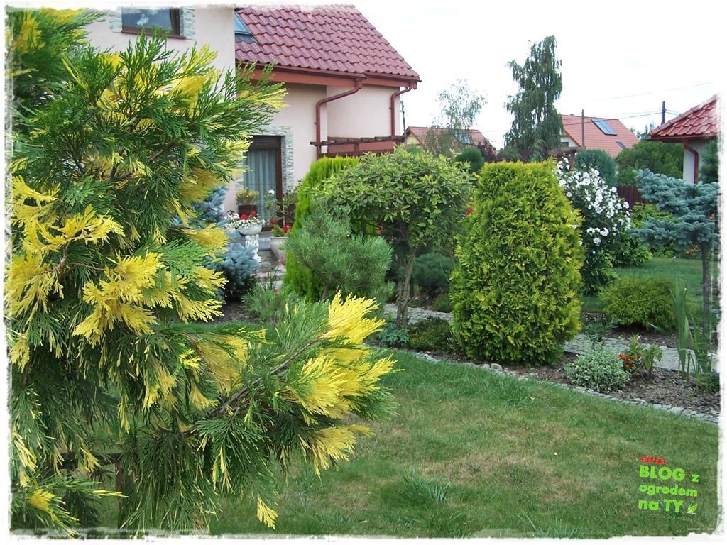 Ogród z dużą ilością gatunków zogrodemnaty12