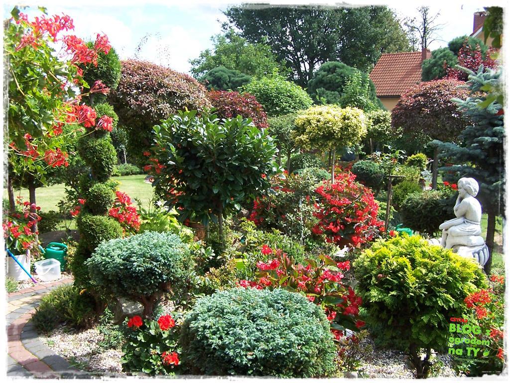 Ogród z dużą ilością gatunków zogrodemnaty26