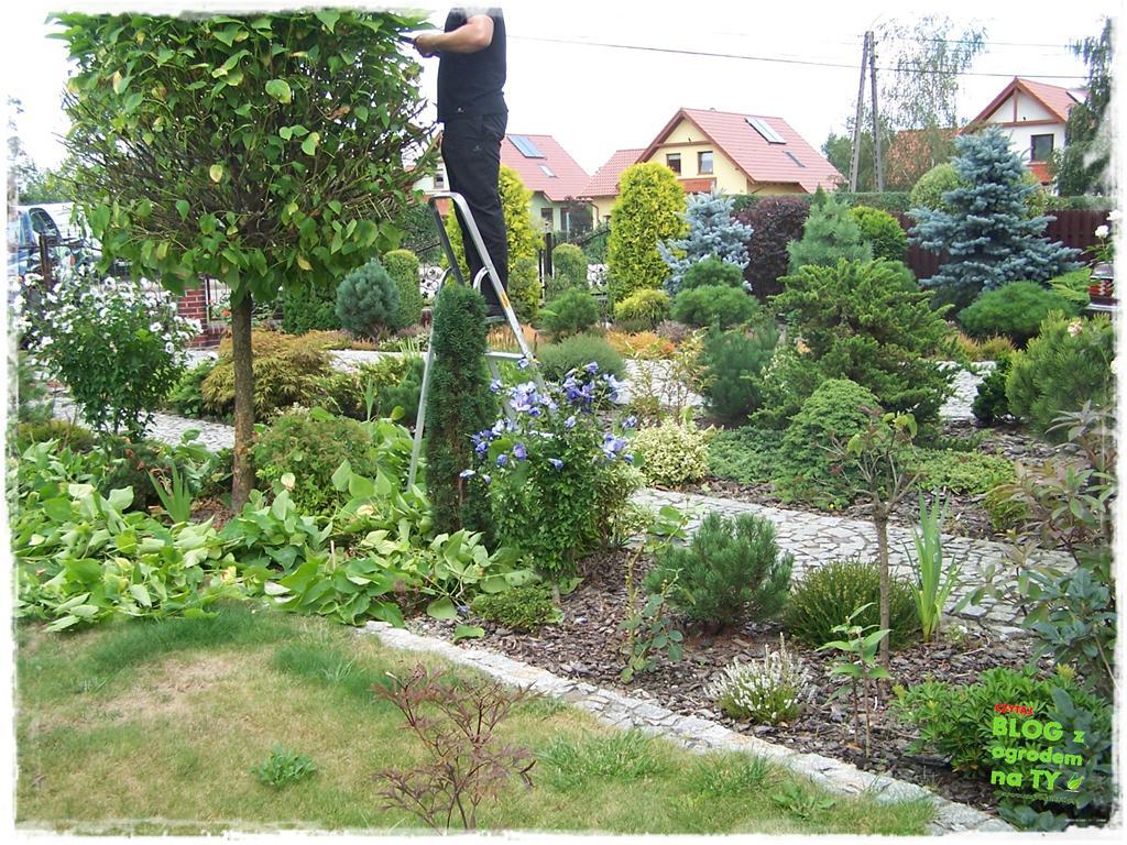 Ogród z dużą ilością gatunków zogrodemnaty13