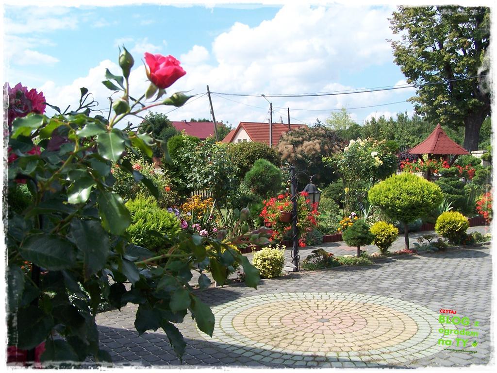 Ogród z dużą ilością gatunków zogrodemnaty38