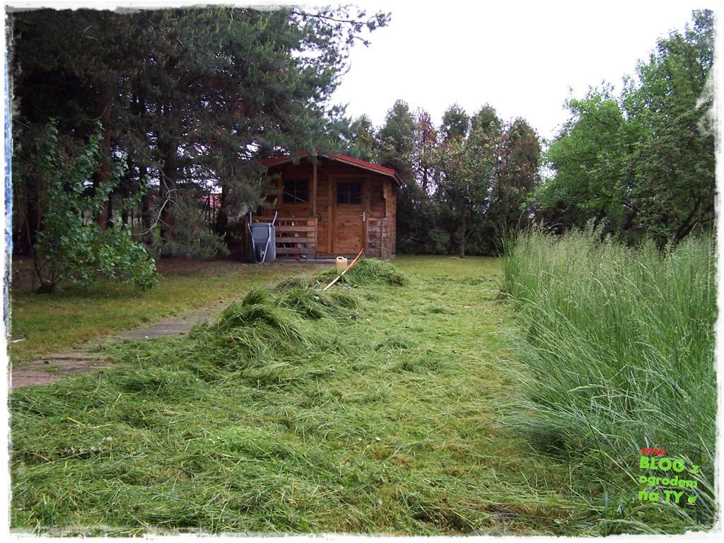 ogród po polsku zogrodemnaty38