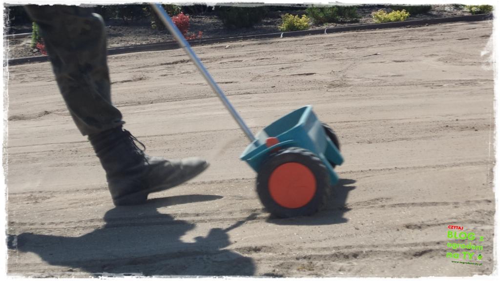 jesienna pielęgnacja trawnika zogrodemnaty5