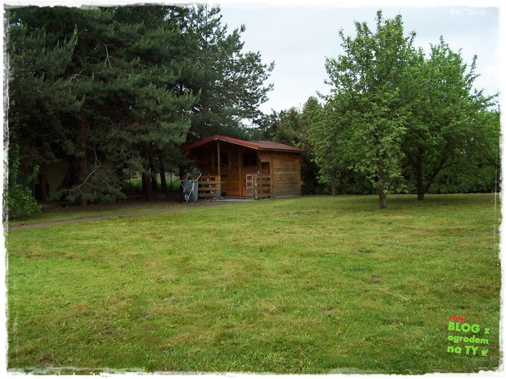 ogród po polsku zogrodemnaty39