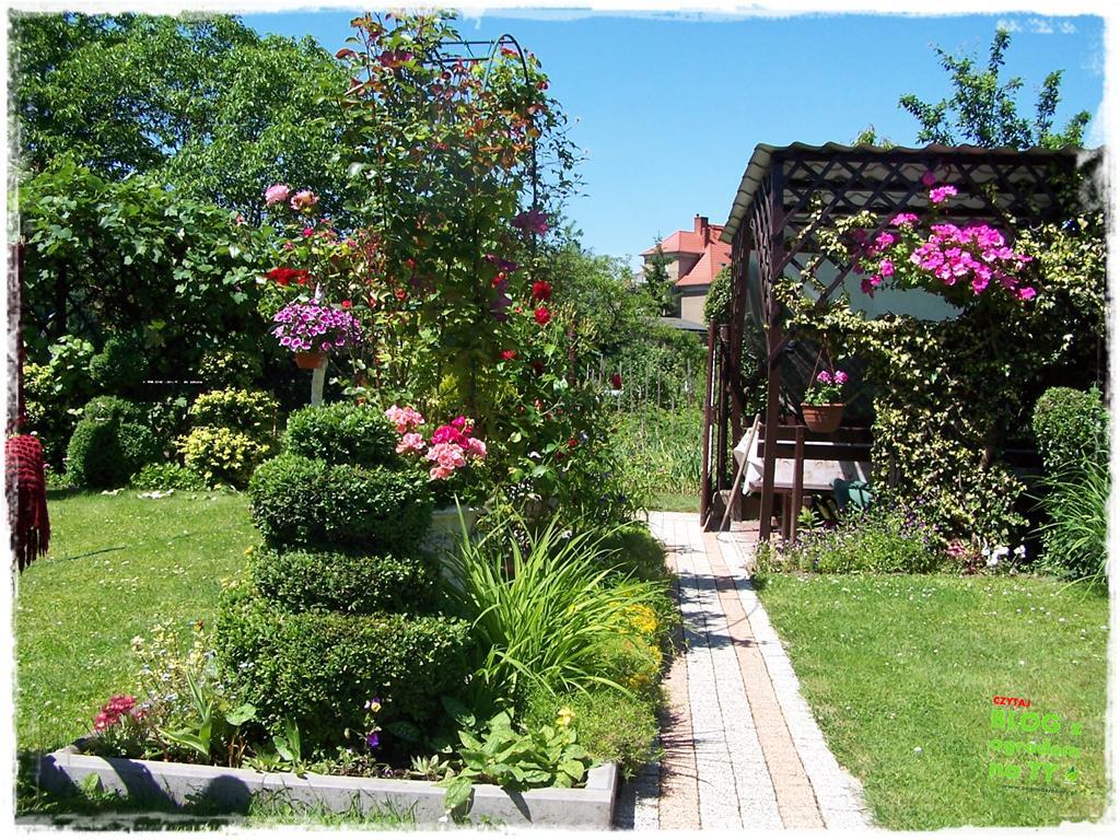 ogród po polsku zogrodemnaty16