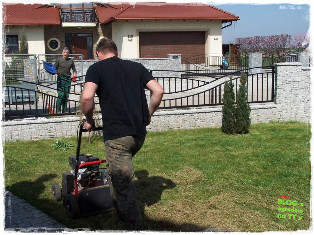 jesienna pielęgnacja trawnika zogrodemnaty4