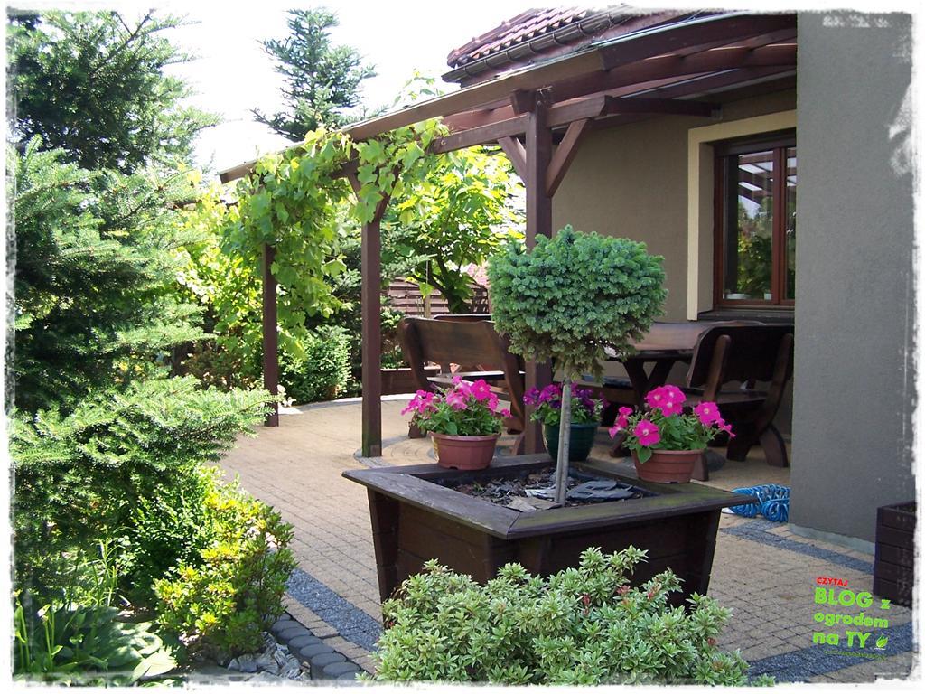 ogród po polsku zogrodemnaty8