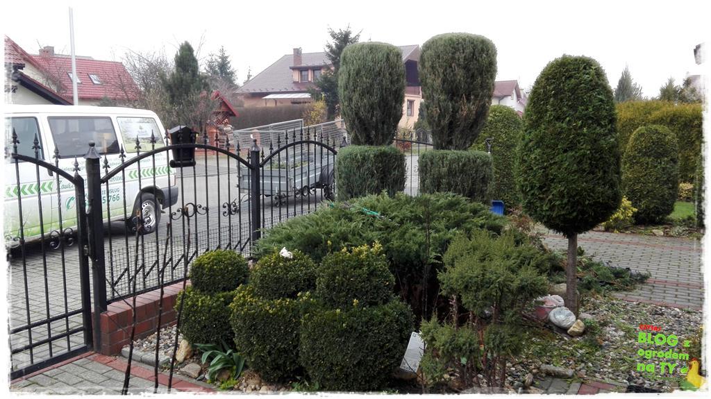 ogród po polsku zogrodemnaty19