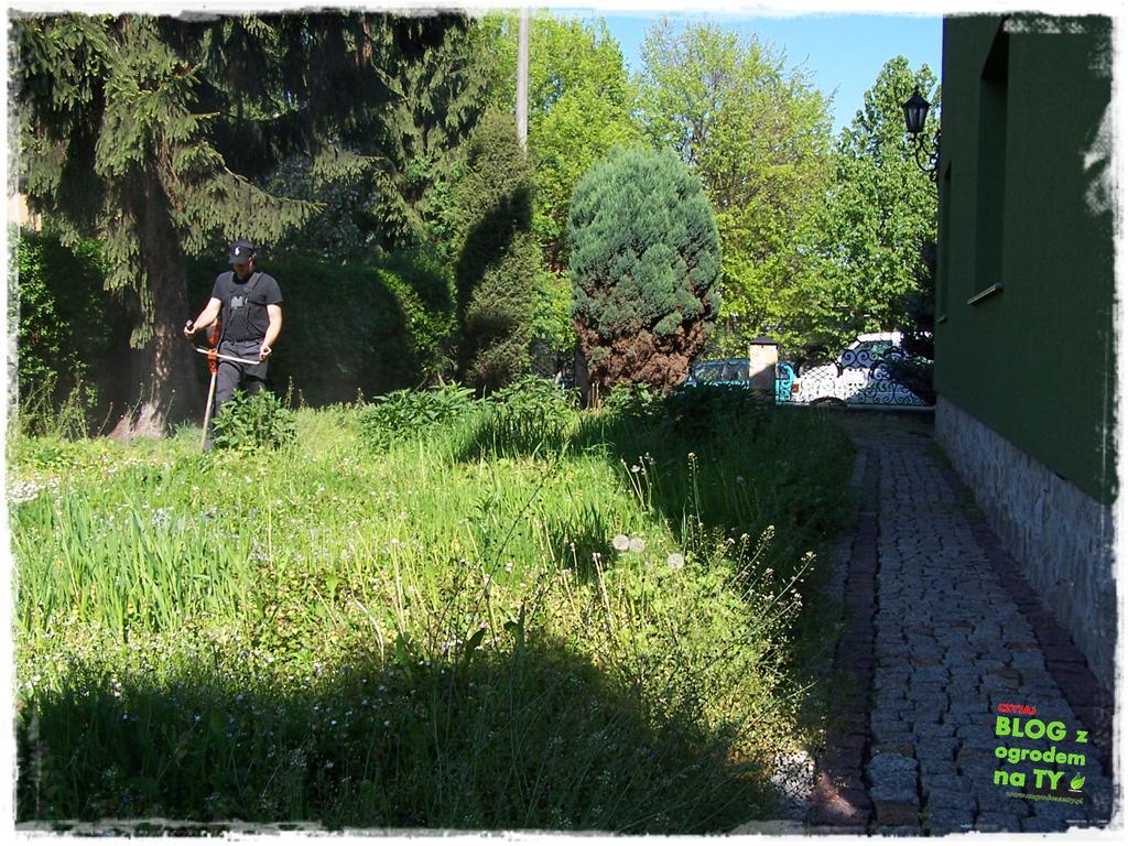 ogród po polsku zogrodemnaty40