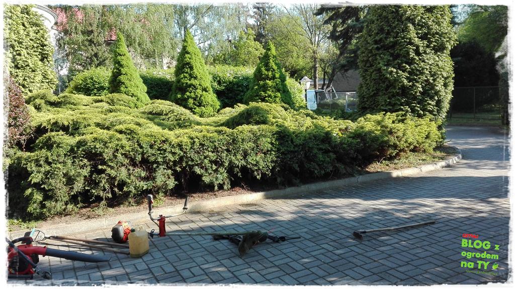 ogród po polsku zogrodemnaty10