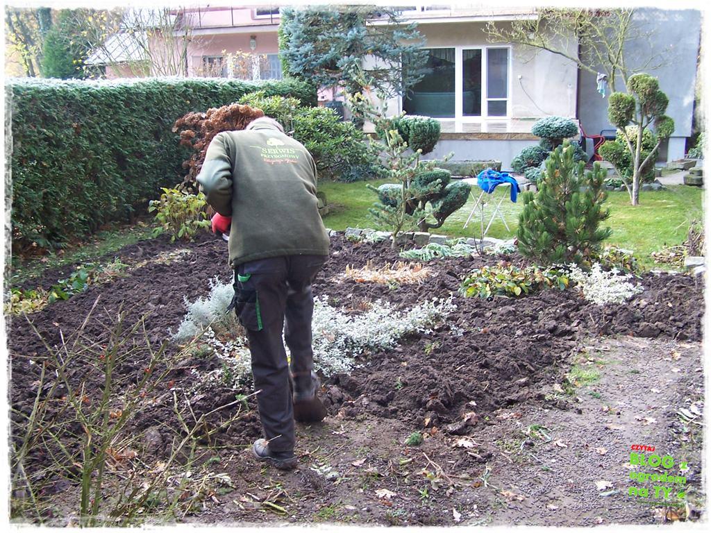 Jak przygotować ogród do zimy zogrodemnaty10