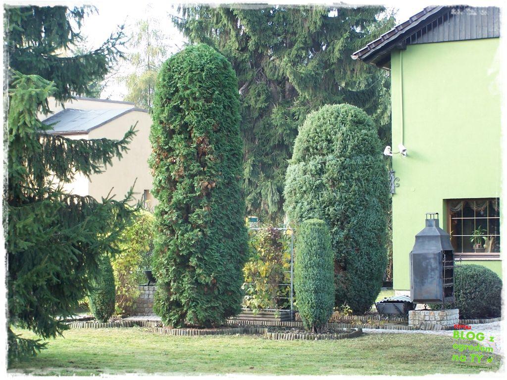 Jak przygotować ogród do zimy zogrodemnaty7