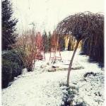 ogród zdicieee
